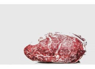 Vaizdinė apžvalga: profesionali mėsos malimo mašina MAXIMA HOLLAND